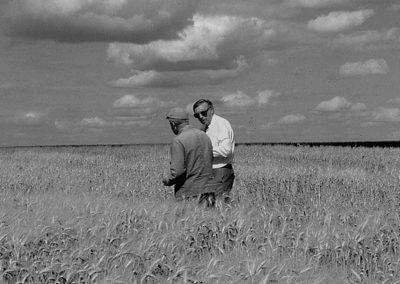 Deux techniciens agricoles dans un champs